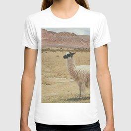 Lama Pampa bolivie T-shirt