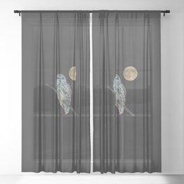 Owl, See the Moon (Barred Owl) Sheer Curtain