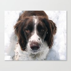 Freckles in Snow Canvas Print