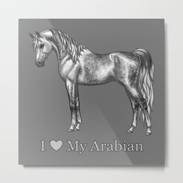 Dapple Gray Horse I Love My Arabian Metal Print