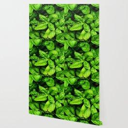Raw Pesto Wallpaper