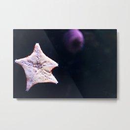 The Underside of a Starfish Metal Print