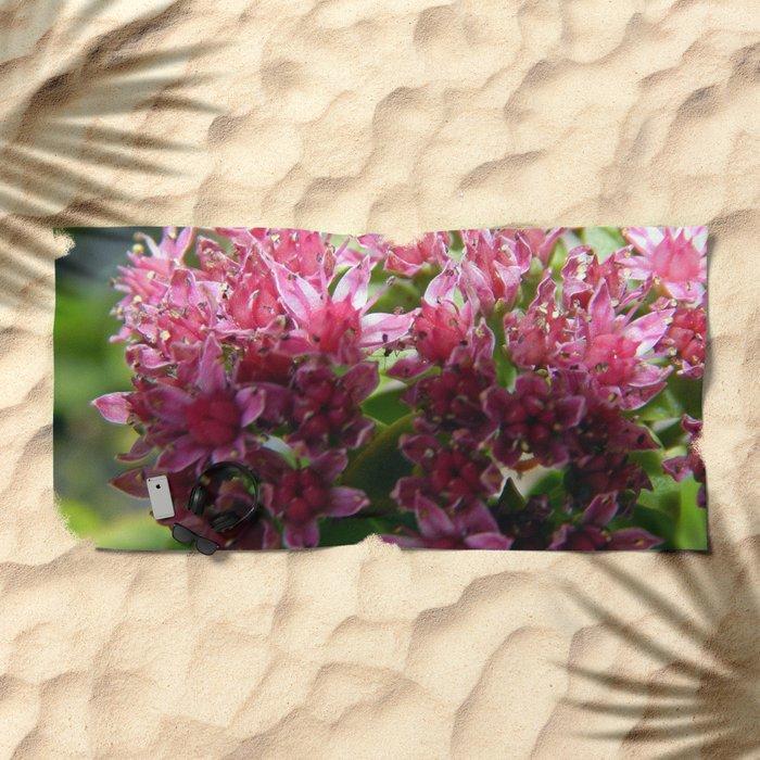 Sedum Flowers and the Ant Beach Towel