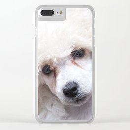 The Innocence of a Puppy Clear iPhone Case