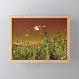 Evening sky over the poppies Framed Mini Art Print