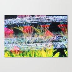Nature Wins Canvas Print