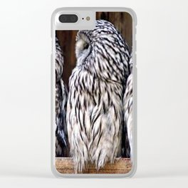 Owl Trilogy Clear iPhone Case