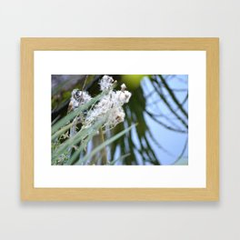 All the World is Fluff and Posture Framed Art Print