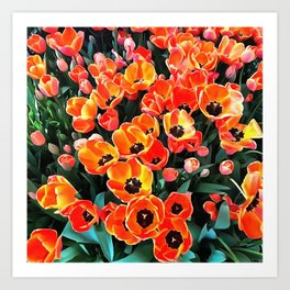 Bright Red Tulips of Istanbul Art Print