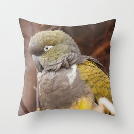 Patagonian Conure Throw Pillow