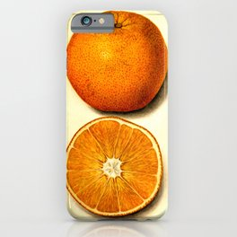 Vintage Botanical Navel Orange iPhone Case