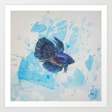 Japanese Fighting Fish Art Print