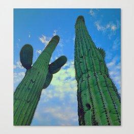 Towering Cacti Canvas Print