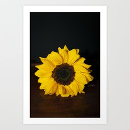 Floral Untitled .11 Art Print