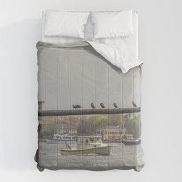 Cormorants on the Greasy Pole Comforters