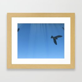 flying to the other side Framed Art Print
