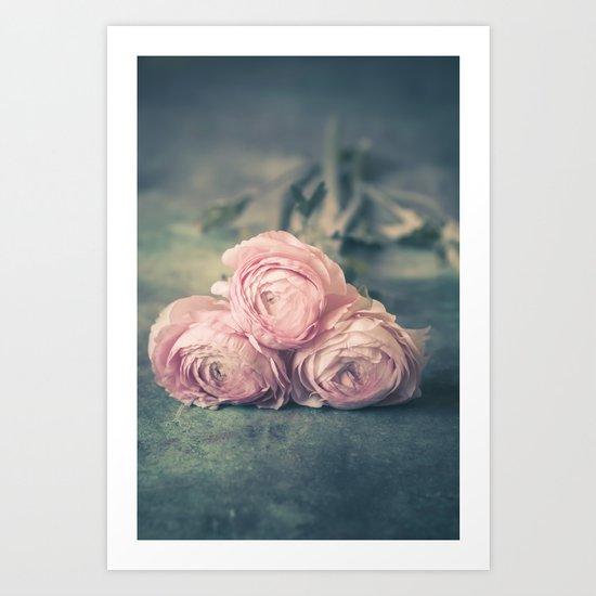 Lovely Ranunculus Art Print