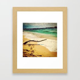 driftwood fun Framed Art Print