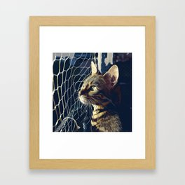 bengal cat yearns for freedom vector art foggy night Framed Art Print