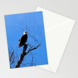 Clear Sight (Bald Eagle) Stationery Cards