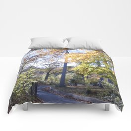 The Warmth of Autumn Comforters