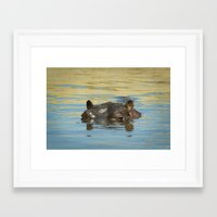 hippo Framed Art Prints featuring Hippo by Ark.Us.