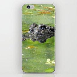 Cautious Caiman iPhone Skin