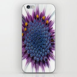 Stunning African Daisy Tropical Flower Macro iPhone Skin