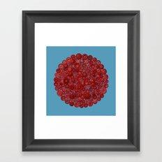Red on Blue Framed Art Print