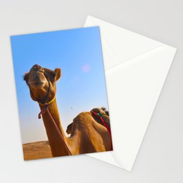 Camel Face Stationery Cards