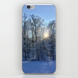 Winter Landscaping iPhone Skin