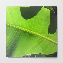 Banana Leaf, Dark Shadows Metal Print