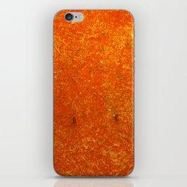 RGB Rust iPhone Skin