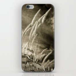 ecology {no.6 iPhone Skin