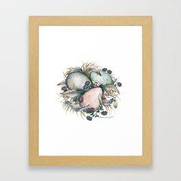 Birds nest Framed Art Print