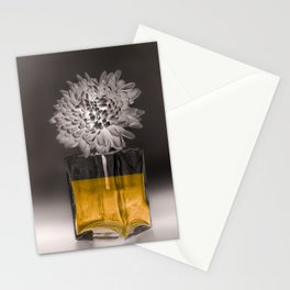 IL NOBLE Stationery Cards