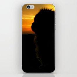 Lion dog sunset iPhone Skin