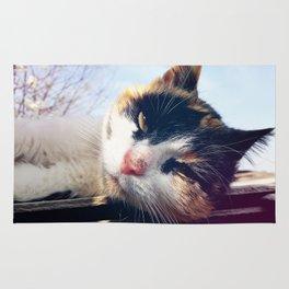 cat lying Rug