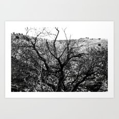 Castle Tree Art Print