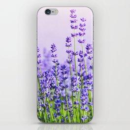 Lavender 15  iPhone Skin