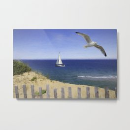 Cape Cod Seashore Metal Print