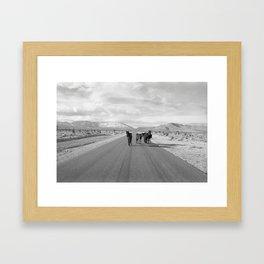 Spring Mountain Wild Horses Framed Art Print