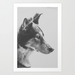 Regal Pup Art Print