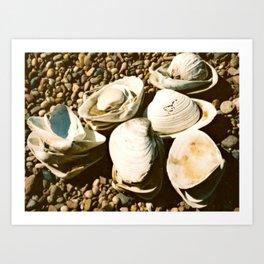 She sells seashells by the seashore Art Print
