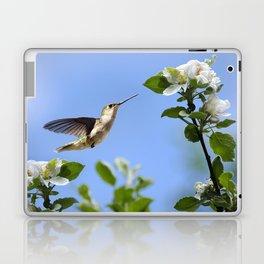 Spring Hummingbird Laptop & iPad Skin