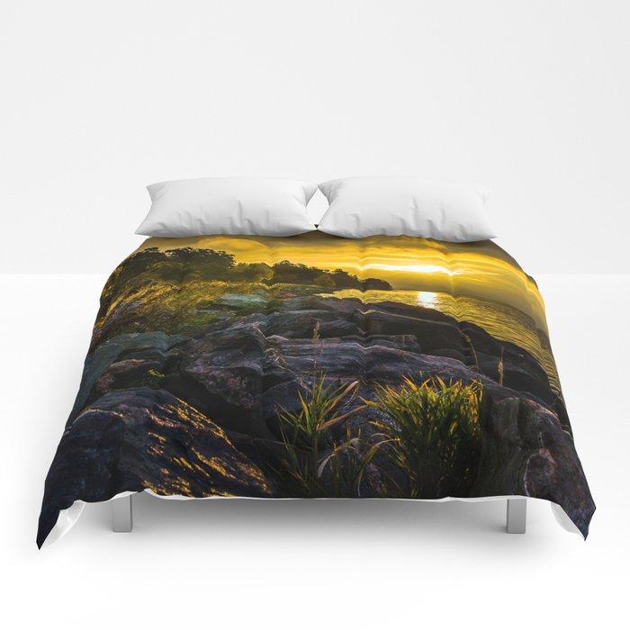 Morning Gold II Comforters