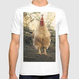 gallo chulo T-shirt