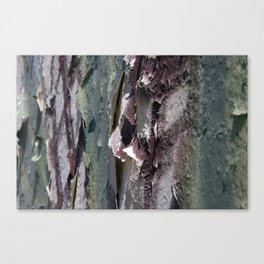 Landscape 3310C Canvas Print