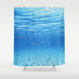 School of Fish Swimming over Sand Bottom in the Tropical Sea Shower Curtain