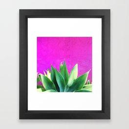 Plants on Pink Framed Art Print
